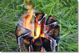 stove-wood3.jpg